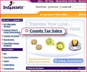 County Tax Sale